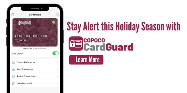 Keep your Cards Protected with COPOCO Card Guard